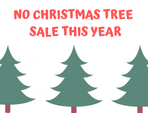 Christmas Tree Sale Canceled